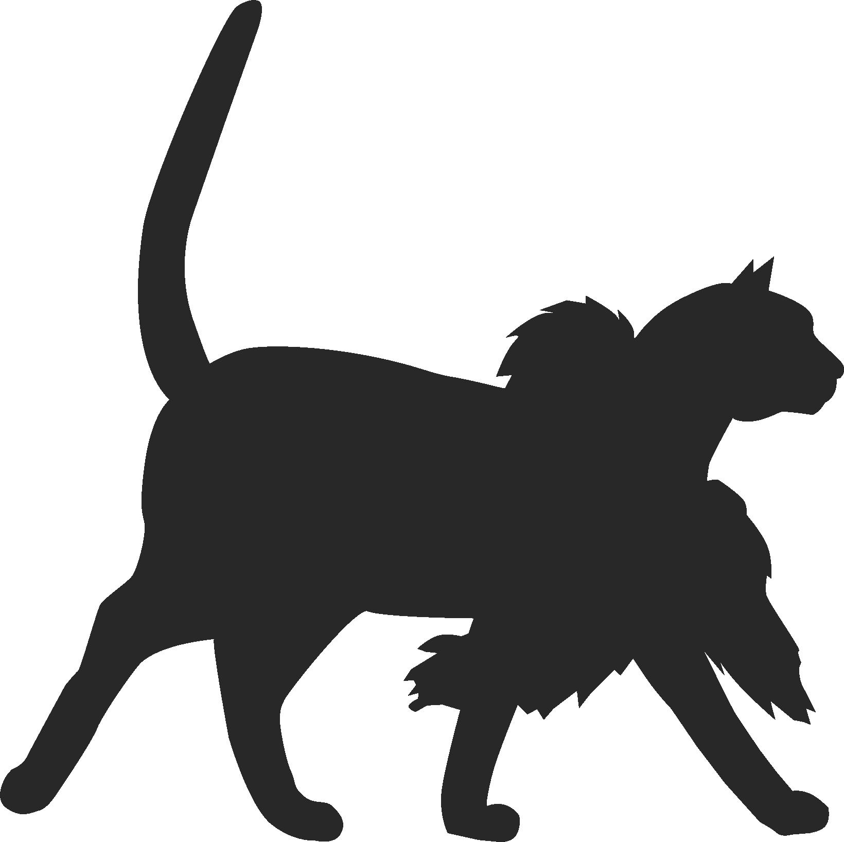 Silhouette einer Katze