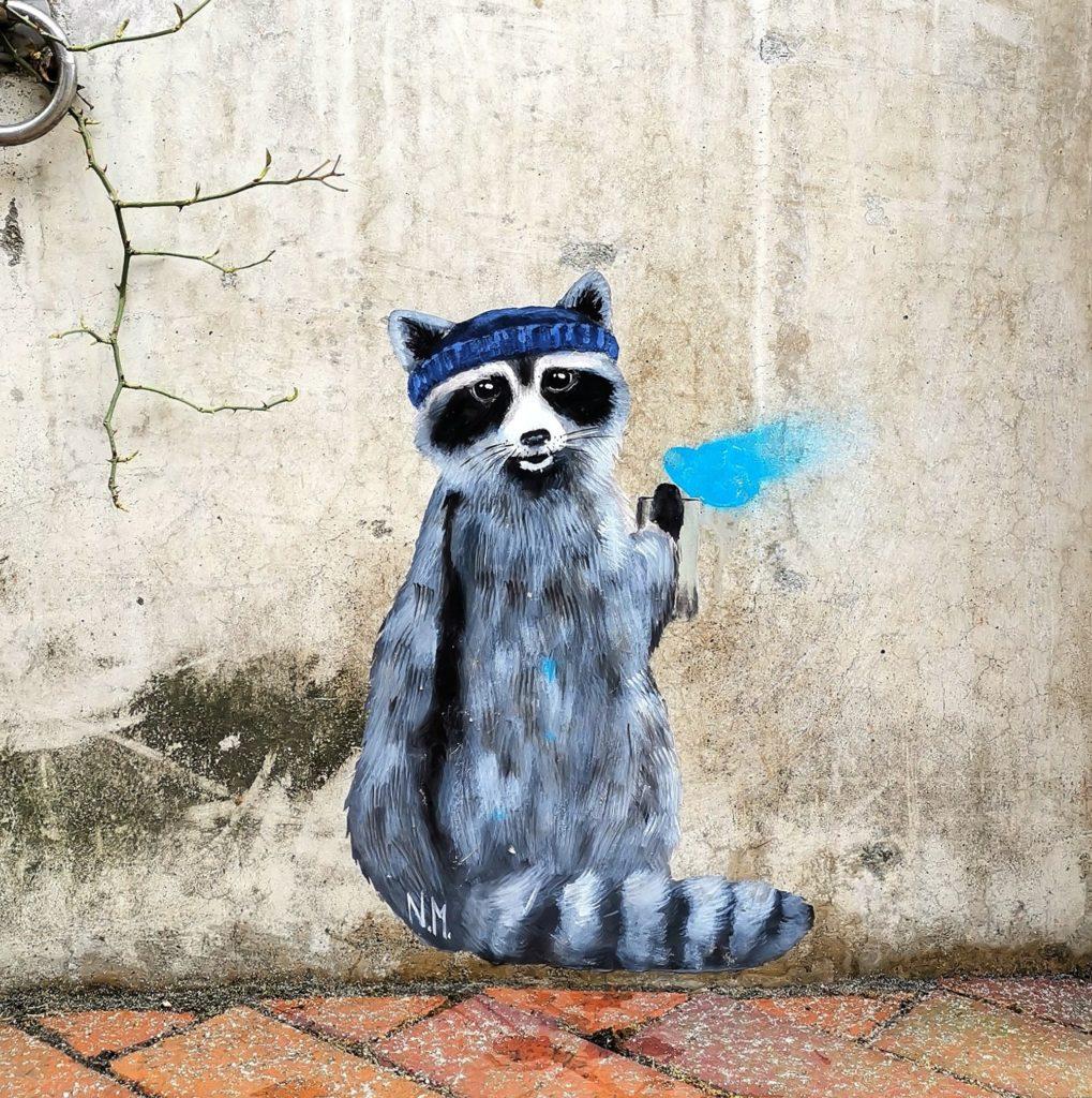 Waschbär malt Graffti an die Wand